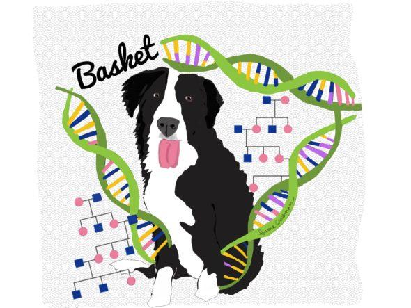 Podcast Episode 9 Our Student Basket Is Helping Geneticists